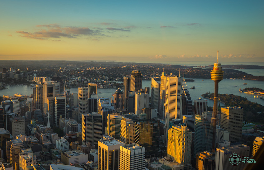 Sydney Tower Aerial View