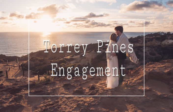 Torrey Pines Engagement Photo Shoot